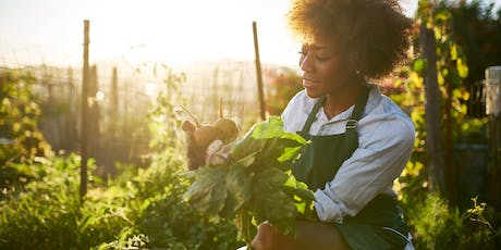 2019 Sustainable Urban Agriculture Workshops tickets