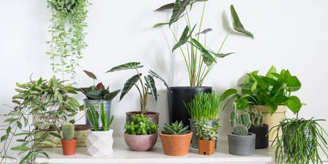 Houseplants 101 with Badding Bros tickets