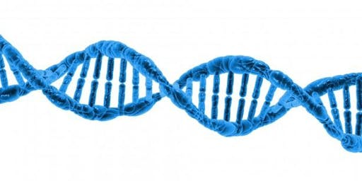 How DNA affects your health