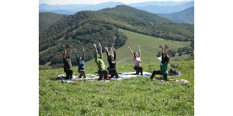 Community Yoga at Point Dillon Park tickets