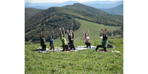 Community Yoga at Point Dillon Park