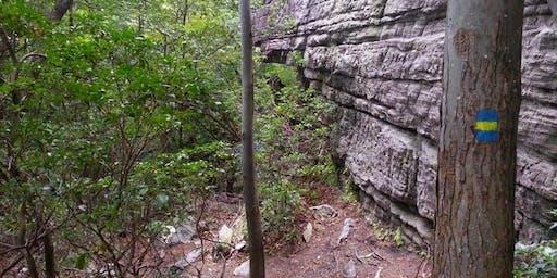 CRUX LGBTQ Climbing - All-Level Top Rope Trip