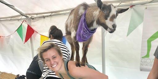 Goat Yoga Nashville- Birthday Party