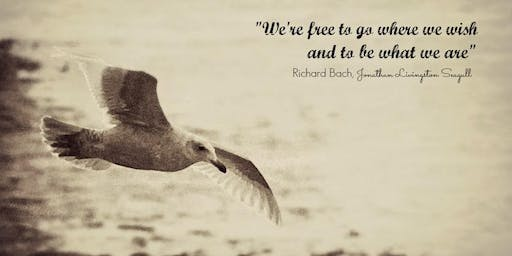 "Director's Book Club: ""Jonathan Livingston Seagull"" By Richard Bach"