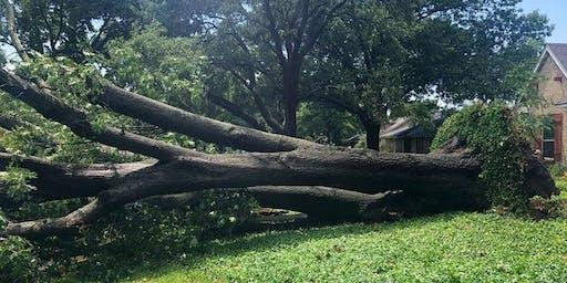 DFW Real Estate Q&A for Storm Damage Webinar