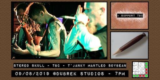 Stereo Skull plus support at Dubrek Studios