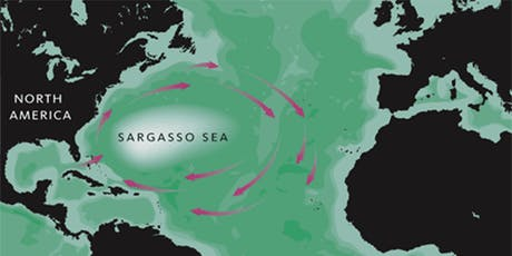 The Sargasso Sea - a suitable case for conservation? tickets