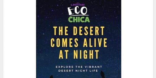 Eco Chica: The Desert Comes Alive at Night