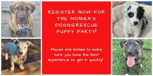 Monika's DoggieRescue Puppy Party
