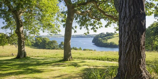 Trelissick Upstairs, Downstairs house tours - July to November