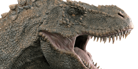 Family Learning - Dinosaur Explorers - Edwinstowe Library tickets