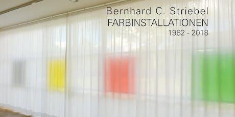 """Buchvorstellung: Bernhard C. Striebel - """"Farbinstallationen 1982-2018"""" Tickets"""
