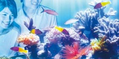 NIFREL Interactive Aquazoo