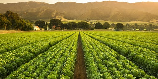 Learning Journey - Climate action: Agriculture as part of the solution to climate change