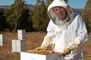 Beekeeping for Beginners -  January 2020