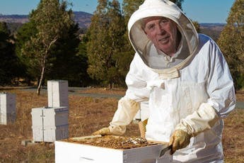 Beekeeping for Beginners - Two Day course on 5th & 12th October tickets