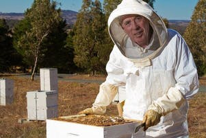 Beekeeping for Beginners - Two Day course on 5th & 12th October