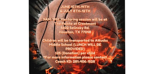 Kids Developing Skills Basketball Camp