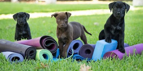 Puppy Yoga at Kentwood Farmers Market! tickets