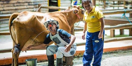 Desconto para FÉRIAS não Mini Fazenda Pet Zoo, em Cotia