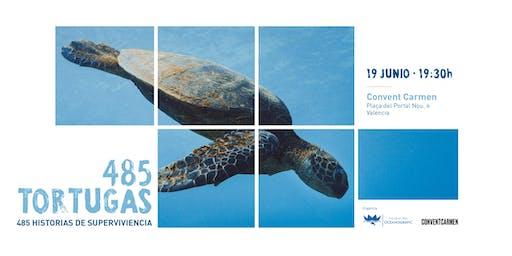 485 tortugas, 485 historias de supervivencia