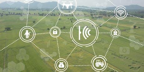 WebValley 2019: l'agricoltura a colloquio con l'intelligenza artificiale biglietti