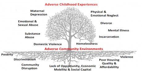 Beyond Trauma: Applying Trauma to the Human Experience  tickets