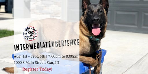 August Intermediate Obedience Class