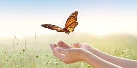 5th Annual Peterborough Butterfly Release tickets