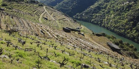 New Spain - Guided Wine Tasting Event tickets