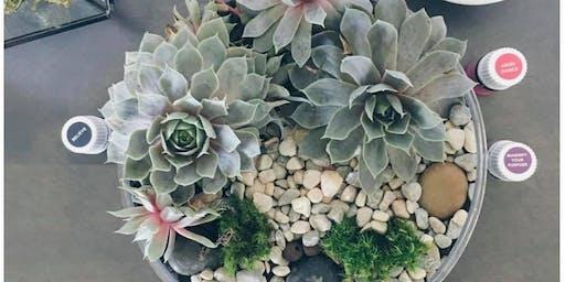 Succulent Diffuser Garden Workshop