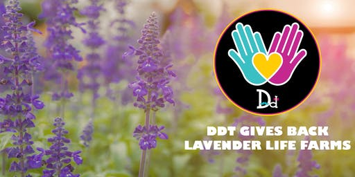 DDT Gives Back - Lavender Life Farms