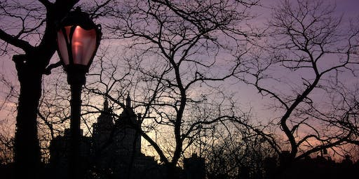 Explore the Hidden Ecology of Central Park After Dark