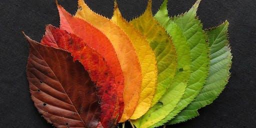 Autumn Craft Morning