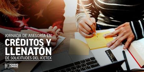 Jornada de Asesoría en Créditos y Llenatón de Solicitudes ante ICETEX entradas