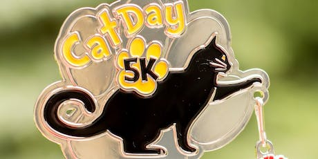 Now Only $8 Cat Day 5K & 10K - Indianaoplis tickets
