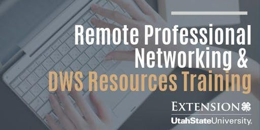 Remote Professional Networking/DWS Resources Training