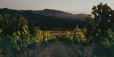 Napa In November Wine Tasting