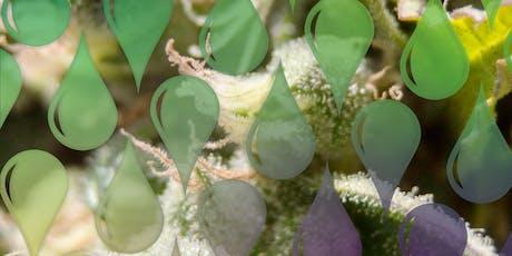 Understanding Extraction: Cannabis + Coffee tickets