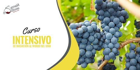Curso Intensivo de Introducción al mundo del vino entradas