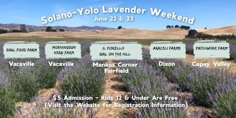 Solano-Yolo Lavender Weekend - June 22 & 23 tickets