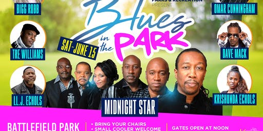Juneteenth Blues In The Park