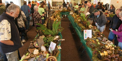 Wild Rivers Mushroom Festival: Sat. and Sun., Nov. 2-3, 2019, 10am-4pm