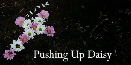 Pushing Up Daisy Written & Performed by Gemma Collins