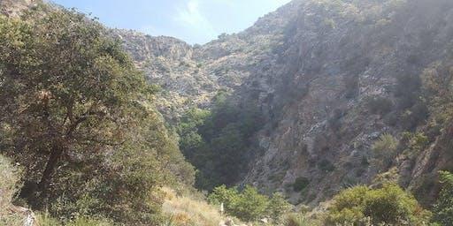 Wild LA Field Trip to Eaton Canyon