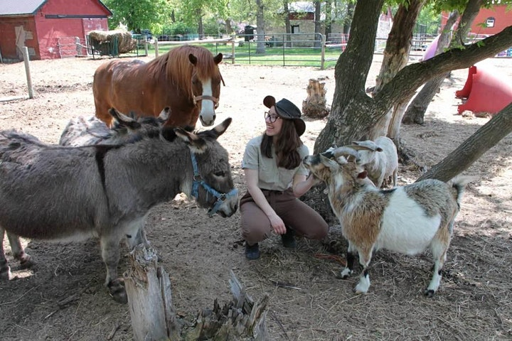 Six Pines Petting Farm ~ A Day For Families image