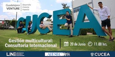 Gestión multicultural: Consultoria Empresarial