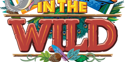 Community Baptist Church VBS 2019