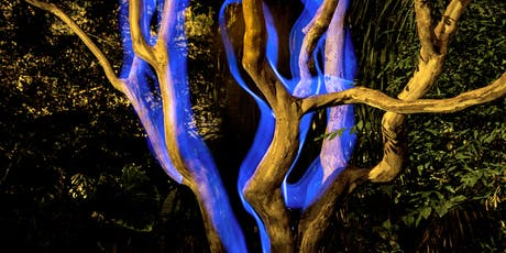 Light Painting - Introductory Workshop tickets