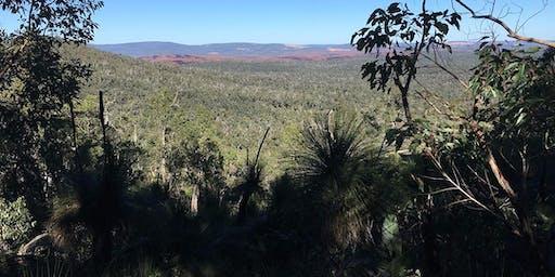 Bibbulmun Track Mountain View 2 day Family Trek Western Australia